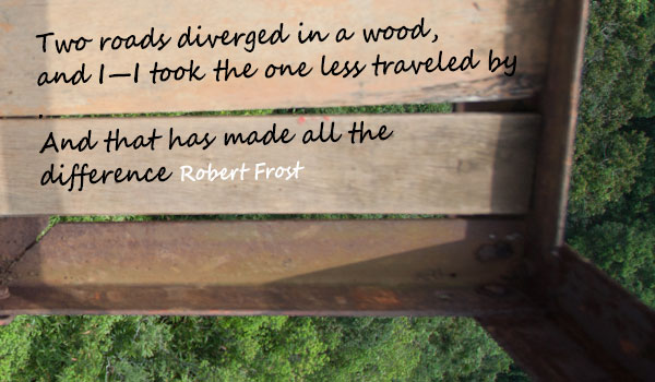 Robert frost quote Diving into the unknown     A starter guide to self discovery