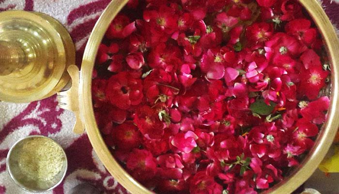 rose-petals-India